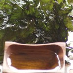 Baked Kale chips with olive oil